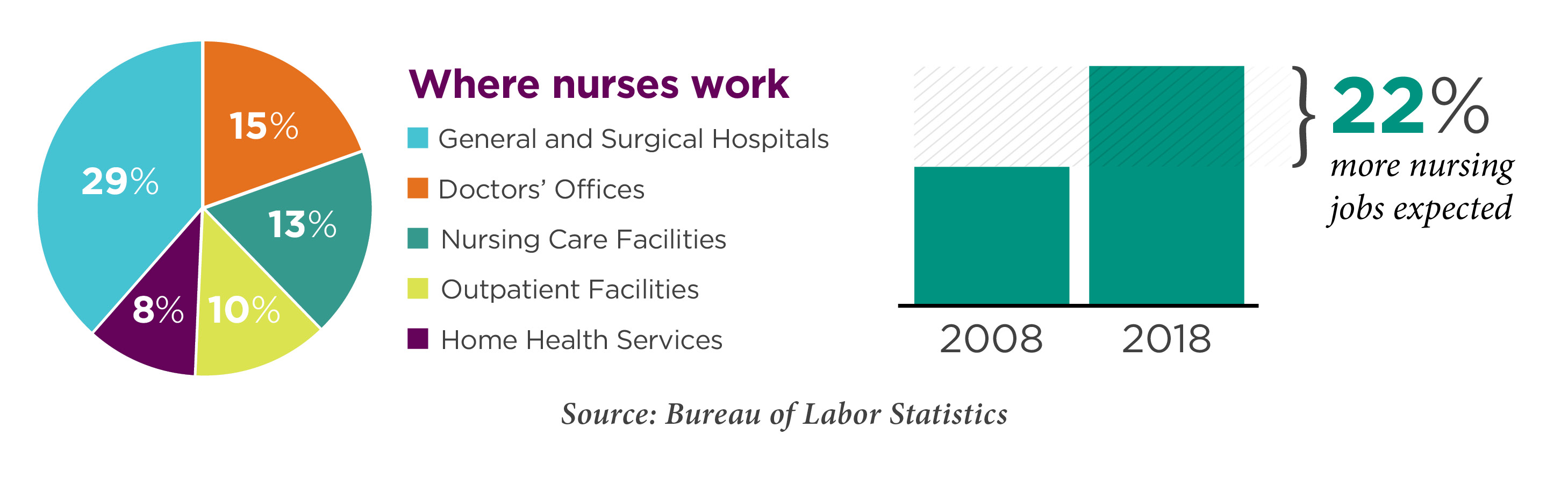 Where Nurses Work chart and graph