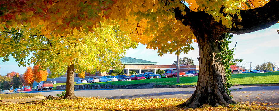 Hues of green, gold, red and orange decorate Missouri State-West Plains each fall.